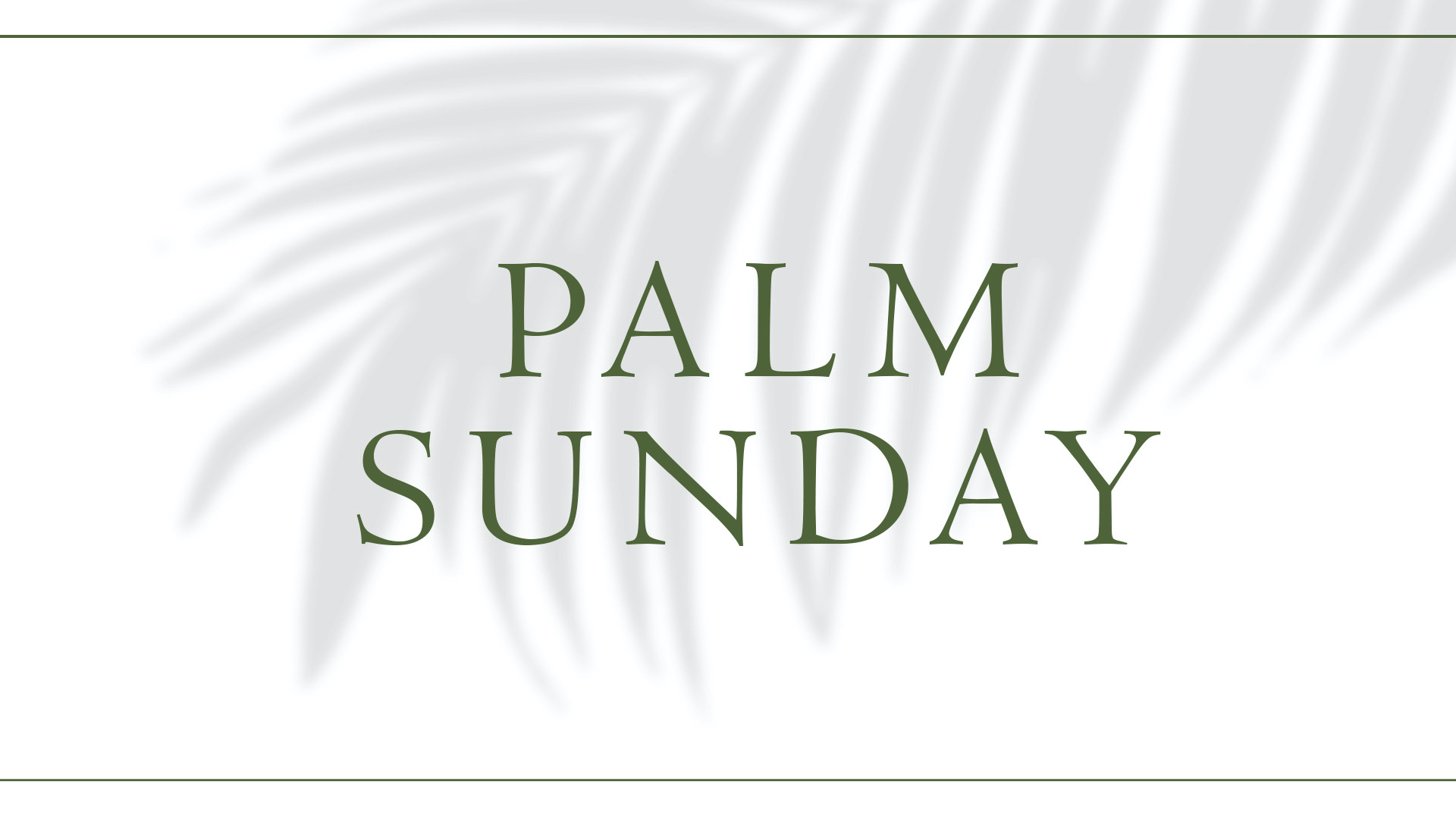 The Perspective Of Palm Sunday