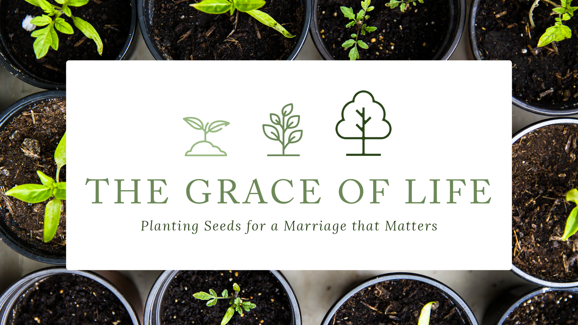 The Grace of Life Pt 2 The Gospel at the Center of Your Marriage